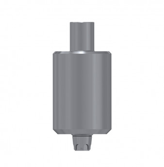 Titanium blank, anti rotation, conical connection, WP