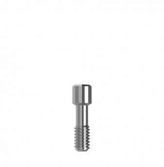 Direct prosthetic screw internal hex.