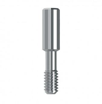 Long prosthetic screw internal hex.