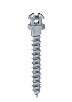 Ortho anchor screw dia. 1.60 L 10mm