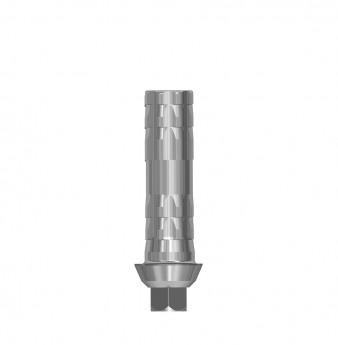 Direct temporary anti rotation cylinder, int. hex., NP