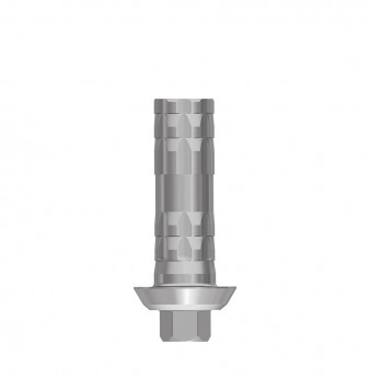 Direct temporary anti rotation cylinder, int. hex., WP