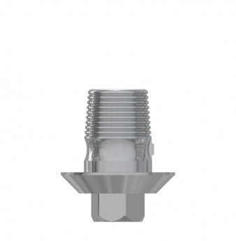 Ti Base h. 4mm with hex., int. hex., WP
